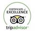 Trip Advisor Logo